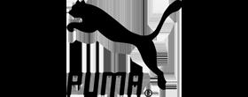 flotte-elettriche-puma-evway